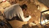 A la recherche de la Joconde, jusque dans sa tombe