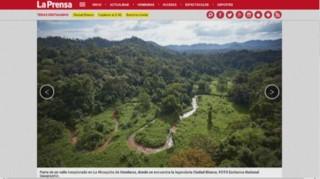 Découverte des vestiges d'une civilisation perdue en Honduras