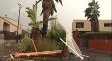 Le 20 heures du 28 novembre 2014 : Arbres d�cin�et logements d�uits : une mini-tornade a travers�%u2019H�ult - 575.184