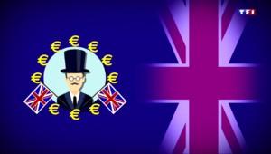 La minute pour comprendre : combien coûte l'Union Européenne aux Britanniques ?