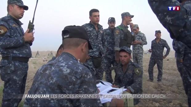 Reprise de Falloujah en Irak : immersion avec les militaires, à quelques mètres des forces de Daech