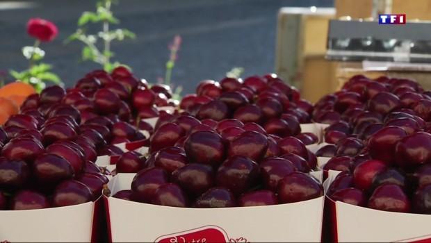 Côte-d'Or : des prix en forte hausse pour les fruits d'été