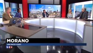 """Polémique sur Morano : """"Valls et Hortefeux ont fait des blagues bidons aussi sinistres"""""""