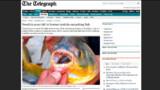 """Un poisson """"mangeur de testicules"""" repéré en Suède"""