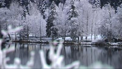 Le 13 heures du 9 décembre 2014 : Premiers flocons de neige dans les Vosges - 229.5782571105957
