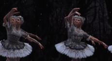 Le 20 heures du 28 novembre 2014 : Casse-Noisette : un ballet f�ique ressuscite le conte pour enfants - 1928.996