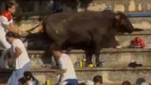 Le taureau sort de l'arène en Espagne : les images