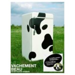 magnets vache