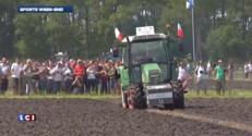 Images du championnat du monde... des laboureurs
