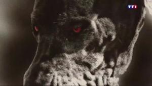 Tour du monde (3/5) : sur les traces de la légende du chien de Baskerville