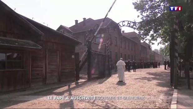 Le pape François à Auschwitz : une visite solennelle et historique