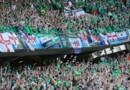 Les supporters de l'Irlande du Nord à l'Allianz Riviera.