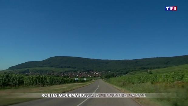 Routes gourmandes : l'Alsace et sa route des vins