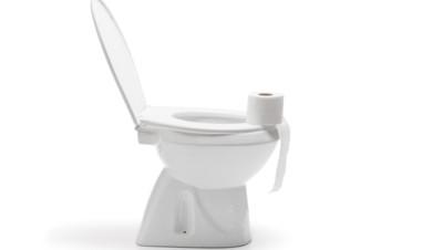 toilette cuvette wc