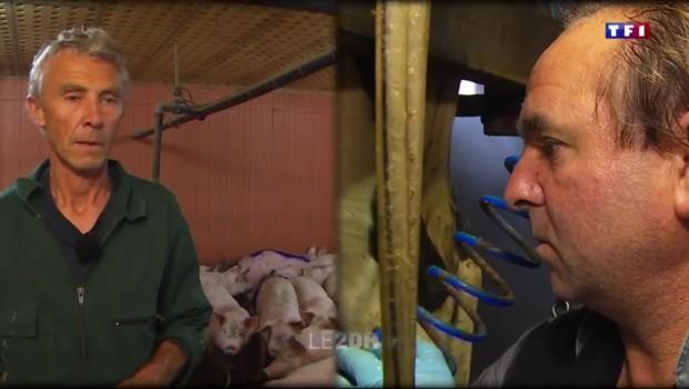 Un an après la crise agricole, deux agriculteurs témoignent