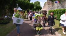 Le 13 heures du 1 juin 2015 : A Doullens, les fleurs ont des pouvoirs - 1844