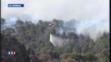 Violents incendies aux Canaries : les images
