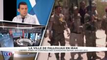 "Irak : la perte de Falloujah plonge Daech dans ""une spirale négative"""