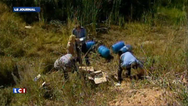 Près de 250 fœtus découverts dans une forêt en Russie
