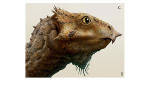 dinosaure à corne amérique