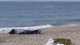 Six migrants retrouvés noyés sur une plage de Sicile