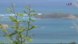 Image d'illustration : trois portés disparus retrouvés vivants en Martinique