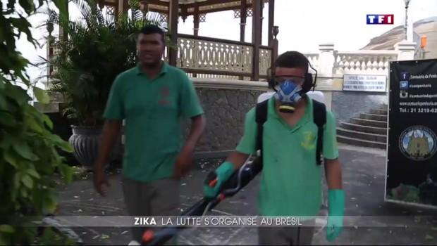 Zika : la lutte s'organise au Brésil
