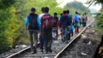 Des migrants à la frontière entre la Hongrie et la Serbie le 25 août dernier