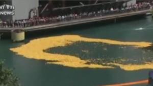 canards plastique chicago course