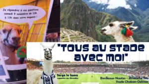 Serge le lama devenu star