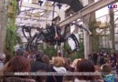 Machines de l'île de Nantes : arachnophobe s'abstenir !