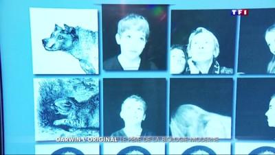 Aux origines de Charles Darwin, l'exposition à la Cité des Sciences