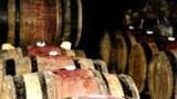 Un Français sur dix est malade de l'alcool