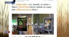 Grenoble : 326 panneaux publicitaires remplacés par des arbres