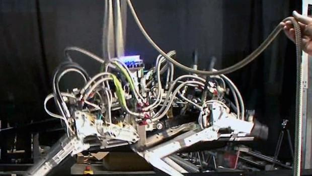 Robot guépard