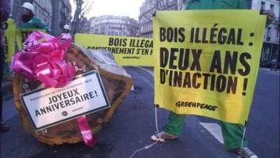 greenpeace opération