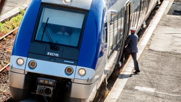 Contrôleur SNCF.