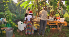 Le 20 heures du 25 décembre 2014 : Menu, ambiance%u2026 à quoi ressemble Noël en Martinique ? - 1706.863