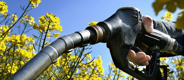 Bientôt une deuxième génération de biocarburants