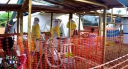 Nouveau vaccin Ebola : efficace à 100%