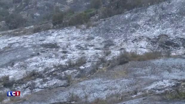 États-Unis : 3000 hectares partis en fumée dans le comté de Santa Barbara