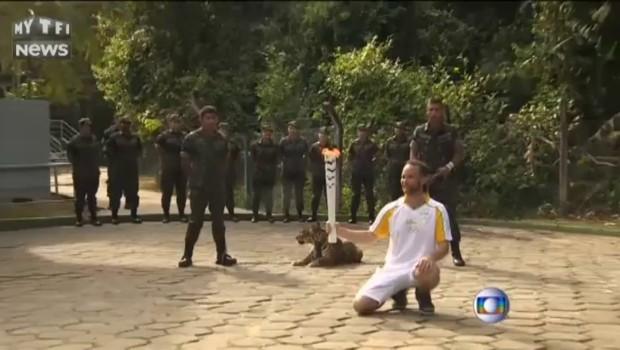 Brésil : le jaguar présent lors du passage de la torche olympique a été abattu