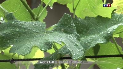 COP21 : l'Australie face à la pénurie d'eau