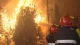 Gironde : 400 hectares détruits dans un incendie près de Lacanau