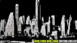 New York New York Collector : Le Test