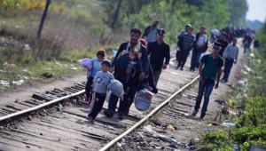 Migrants en Hongrie, 14/9/15