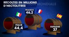 Le 20 heures du 24 octobre 2014 : La France redevient le premier producteur mondial de vin - 800.1922814025879