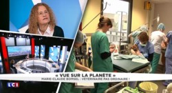 """Vétérinaire, """"un métier très salissant"""" : lycéenne, Marie-Claude Bomsel avait déjà de la répartie"""