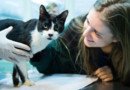 Elena Hanke et son chat Miko retrouvé le 25 décembre 2015 après 7 ans de disparition