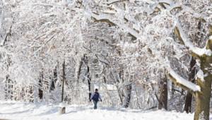 La ville de Madison, dans le Wisconsin, a connu des chutes de neige record fin décembre 2012.